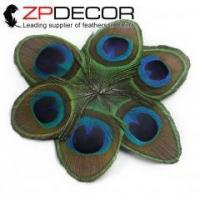 China ZPDECOR 10-12cm(4-5inch) Mate-attracting Trimmed Peacock Eye Feather for Hair Extensions on sale