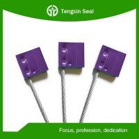 Adjustable Tamper Evident CableSeal for Container