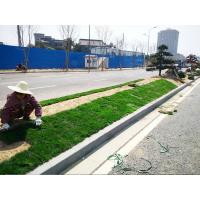 Cheap Project Landscape engineering for sale