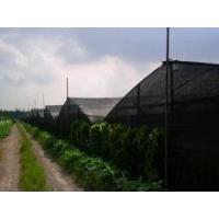 Cheap insect proof net for greenhouse for sale