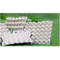 Cheap BIODEGRADABLE PULP EGG TRAYS for sale