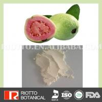 China Fruit Powder And Vegetable Powder Plant Extracts on sale