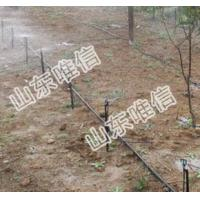 China Ground-Inserted Type Of Type Micro Sprinkler on sale