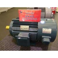 Cheap Advantages of Three Phase Induction Asynchronous Motors YVF2 Series Types, Uses and Voltage for sale