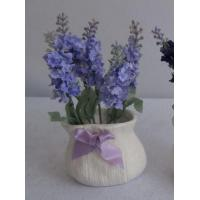 Buy cheap THREAD ROD SS 304 SPRING NUT Lavender in ceramic sack pot, clear pvc box packing from wholesalers