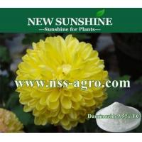 Cheap Plant growth Regulator Dwarf Chrysanthemum plant growth hormone Daminozide (B9) for sale
