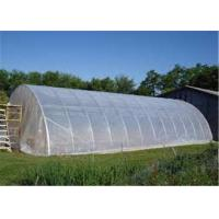 Cheap Clear Plastic Sheet Roll Anti Fog / Mulch Jumbo Rolling Plastic Cover For Greenhouse for sale