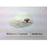 Cheap Legal Increase Muscle Mass Boldenone Steroid Bold Cyp Powder CAS 106505-90-2 99% for sale