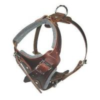 Cheap Agitation / Protection / Attack Leather Dog Harness - H1 for sale