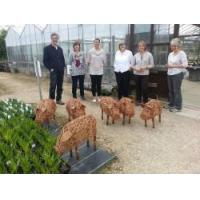 Cheap Animal Sculpture Workshops - North Yorkshire for sale