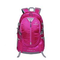Cheap 35L Frame Backpack for sale