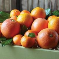 Cheap CITRUS MEDLEY NO.38 deliver gift hamper to shenzhen for sale