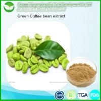 Cheap Green Coffee Bean Extract for sale