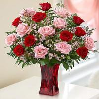 China Valentine's Day Shades of Pink and Red Premium Long Stem Roses.No.69 send flower on sale