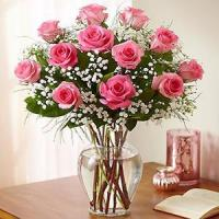 China Valentine's Day Rose Eleganc Premium Long Stem Roses.No.100 send flower to sydn on sale