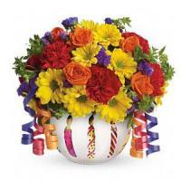 Cheap Birthday Teleflora's Brilliant Birthday Blooms.No.6 delivery birthday to for sale