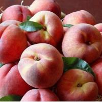 Cheap PEACHES NO.42 delivery basket to china for sale