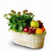 sale fruit gifts c
