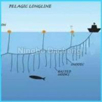 Cheap Colored Dragging Fishing Nets on Sale for sale