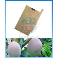Cheap Mango Paper Bag Mango Protection Paper Bag for sale