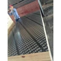 Buy cheap Black Film face plywood from wholesalers