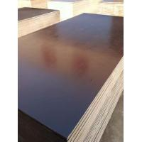 Buy cheap Finger Jointed core Film faced plywood from wholesalers