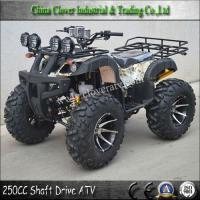 China Professional Chinese ATV 250CC Sport Quad 250CC ATV with Differential on sale