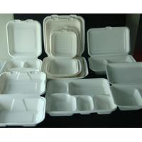 China Sugarcane Bagasse Pulp Products on sale