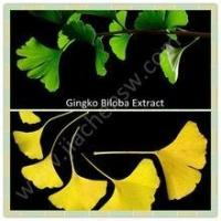 Cheap 100%Natural High Quality Gingko Biloba Extract for sale