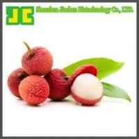 Cheap Natural Litchi P.E for sale