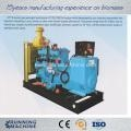 China Biomass Power Generation Units Wood gas generator and biogas generator