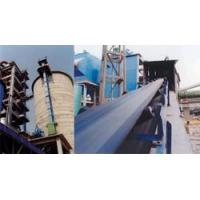Conveying/Lifting/Packing Equipments Conveyor