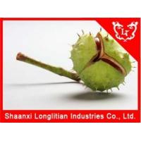 Cheap Immunity Enhancers China Horse chestnut extract powder Wholesale for sale