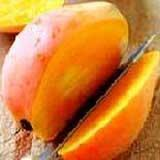 Cheap Totapuri Mango Pulp for sale