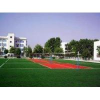 Buy cheap Artificial Turf Sports from wholesalers