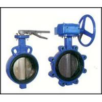 Cheap Bi-axial butterfly valve witho for sale