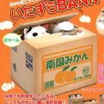 China Cat Piggy Bank on sale