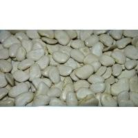 Cheap Commodity: Myanmar Butter Bean (FAQ) for sale