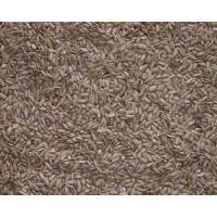 Cheap Hulled sunflower seeds for sale
