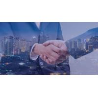 Cheap  flexible organization open llc in delaware for foreign investors for sale