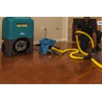 Cheap Water Damage Restoration Services in Folsom CA for sale