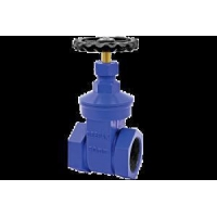 Cheap Y-type Strainer for sale
