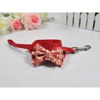 Leash and Collars Modern bow tie/L