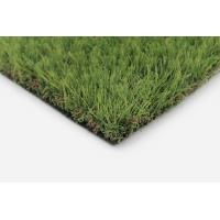 Buy cheap Landscape Flat Fescue Paradise 408818 from wholesalers