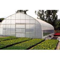 Cheap Polytunnel Products Ploytunnel (BZ-PT-1405) for sale