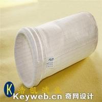 China PTFE membrane WOR and Antistatic PE Needle Felt/bags on sale